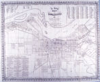 A New Map of Louisville Ky.